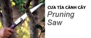4.pruning_banner